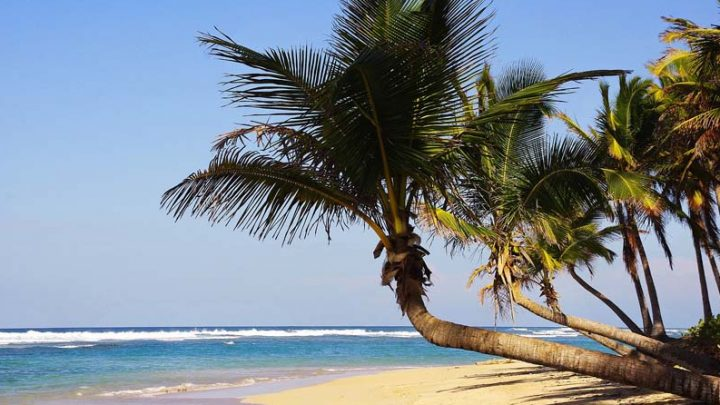 Dominican Republic Travel Tips – Advice for First-Time Visitors