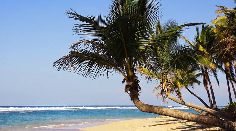 Dominican Republic Travel Advice >> Dominican Republic Travel Tips Advice For First Time Visitors