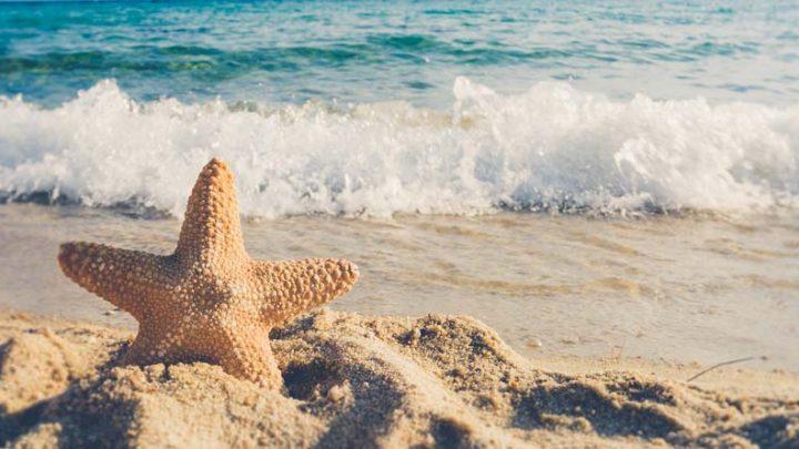 World Tourism Day – When Tourism Meets Digital Transformation
